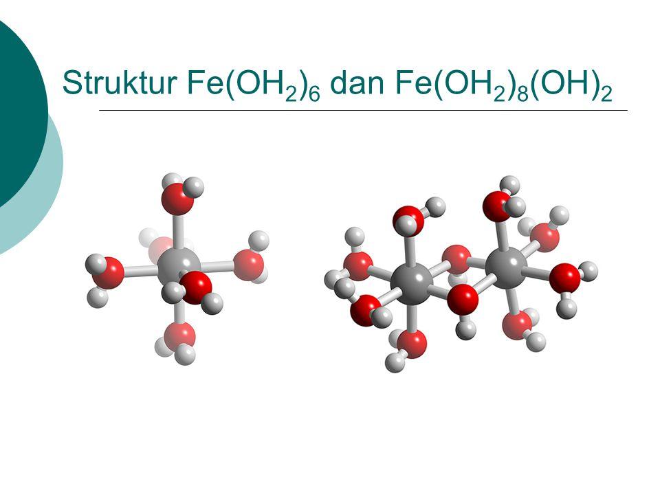 Struktur Fe(OH 2 ) 6 dan Fe(OH 2 ) 8 (OH) 2