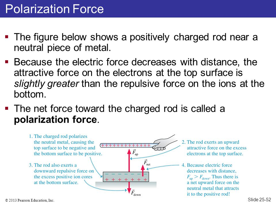 © 2013 Pearson Education, Inc. Polarization Force  The figure below shows a positively charged rod near a neutral piece of metal.  Because the elect