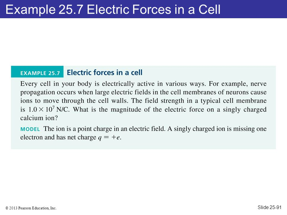 © 2013 Pearson Education, Inc. Example 25.7 Electric Forces in a Cell Slide 25-91