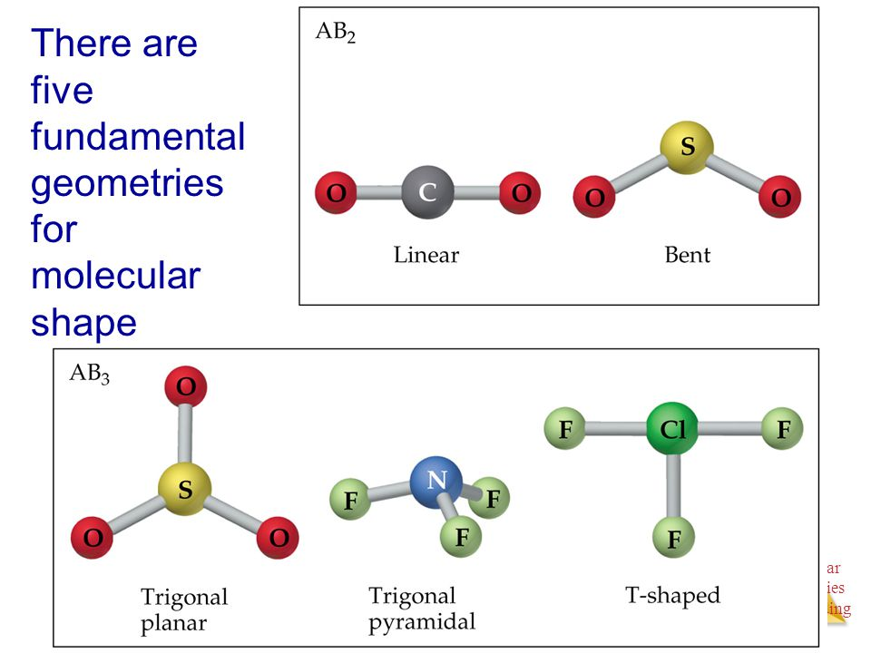 Molecular Geometries and Bonding Molecular Geometries and Bonding There are five fundamental geometries for molecular shape