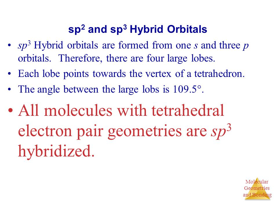 Molecular Geometries and Bonding Molecular Geometries and Bonding sp 2 and sp 3 Hybrid Orbitals sp 3 Hybrid orbitals are formed from one s and three p