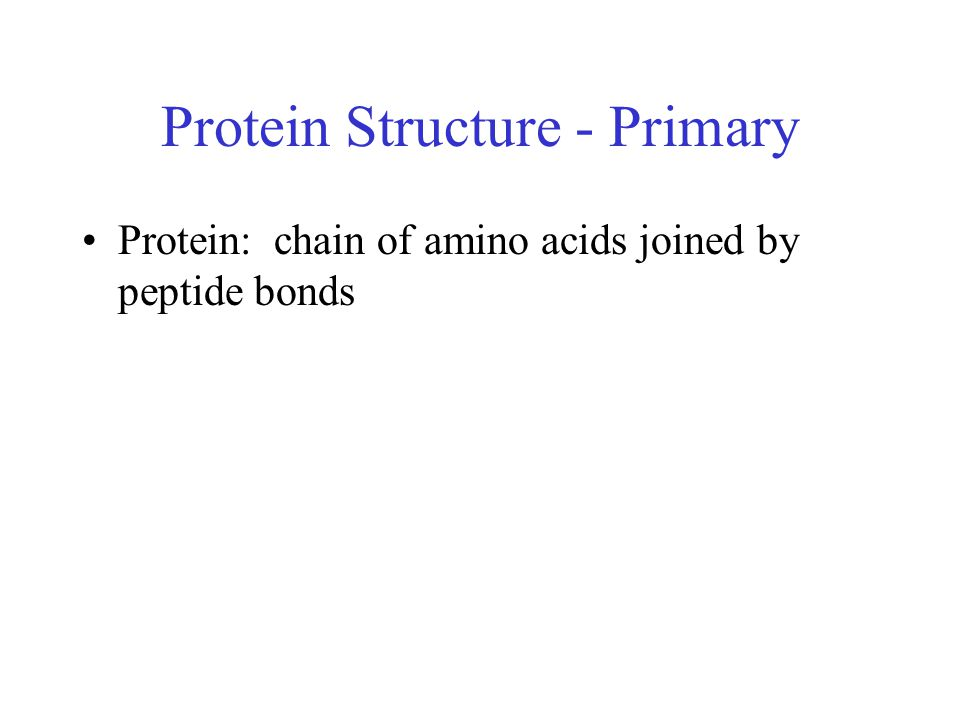 Protein Structure - Primary Protein: chain of amino acids joined by peptide bonds
