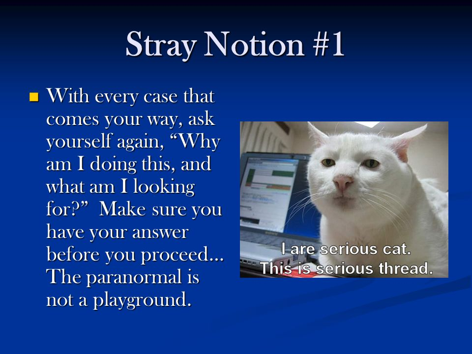 Stray Notion #1 With every case that comes your way, ask yourself again, Why am I doing this, and what am I looking for Make sure you have your answer before you proceed… The paranormal is not a playground.