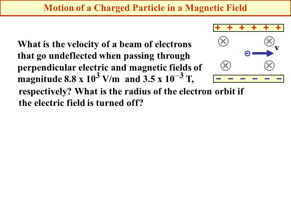 What is the velocity of a beam of electrons that go undeflected when passing through perpendicular electric and magnetic fields of magnitude 8.8 x 10 3 V/m and 3.5 x 10  3 T, v respectively.
