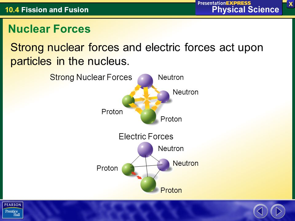 10.4 Fission and Fusion Strong nuclear forces and electric forces act upon particles in the nucleus. Nuclear Forces Neutron Proton Strong Nuclear Forc