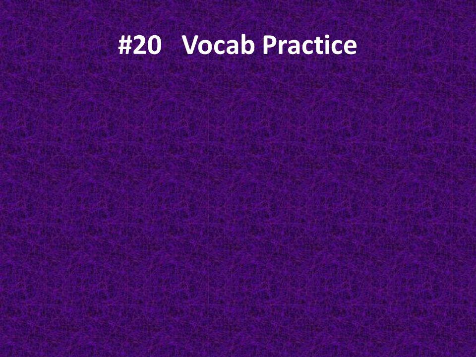 #20 Vocab Practice