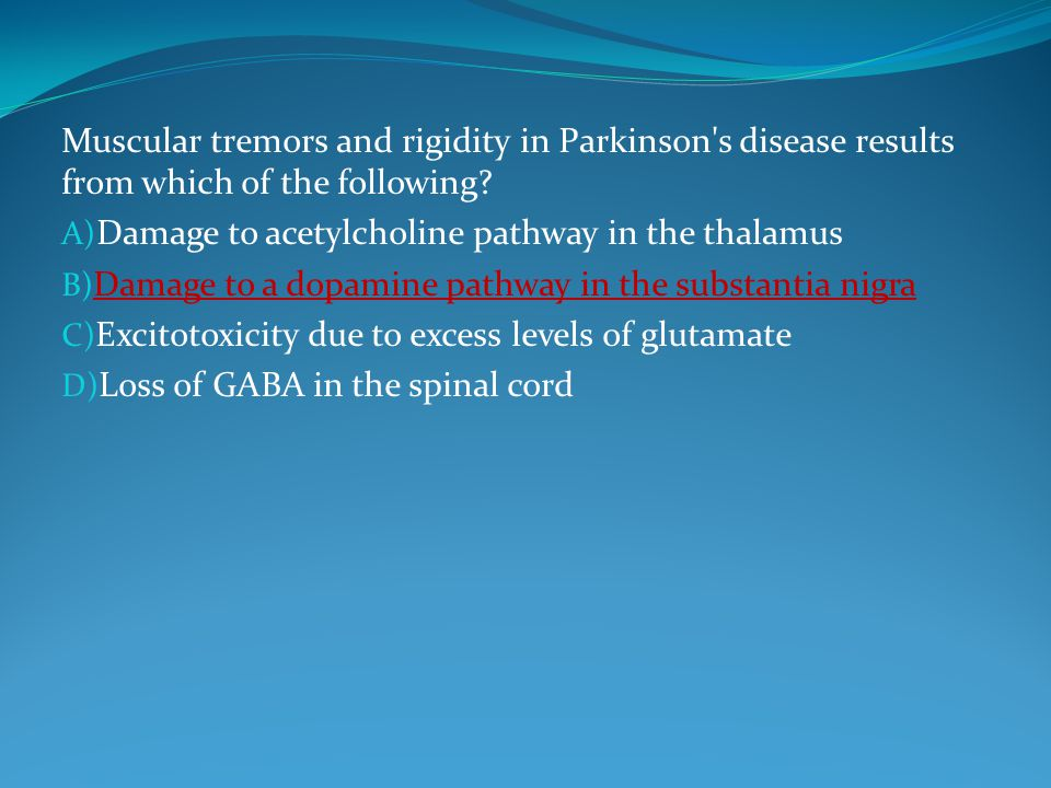 Muscular tremors and rigidity in Parkinson s disease results from which of the following.