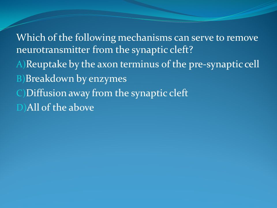 Which of the following mechanisms can serve to remove neurotransmitter from the synaptic cleft.