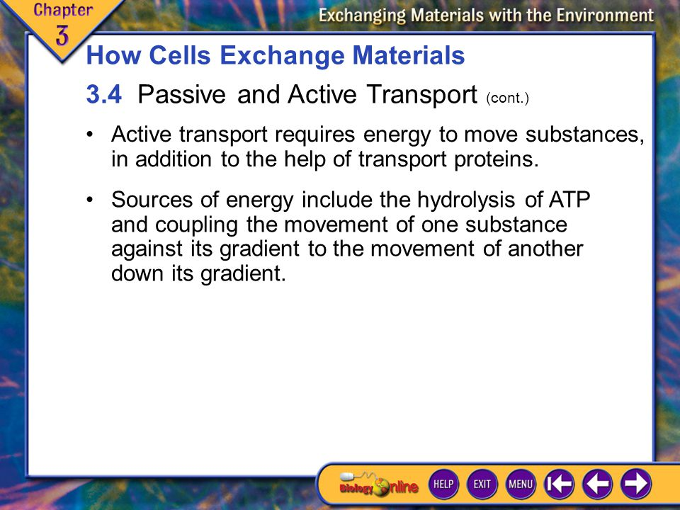 3.4 Passive and Active Transport 3 Active transport requires energy to move substances, in addition to the help of transport proteins.