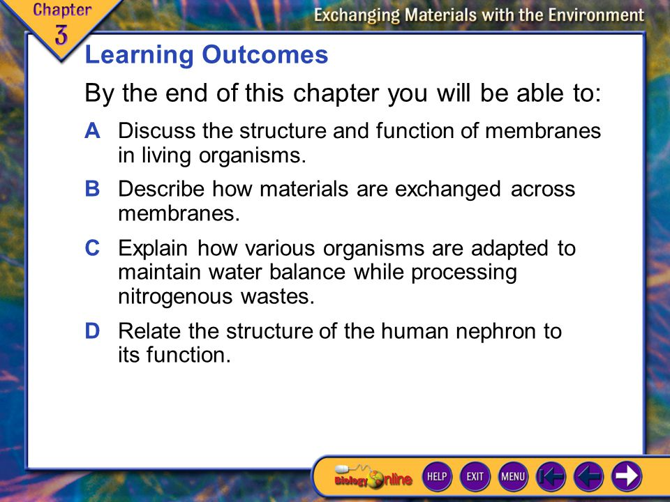 Learning Outcomes ADiscuss the structure and function of membranes in living organisms.