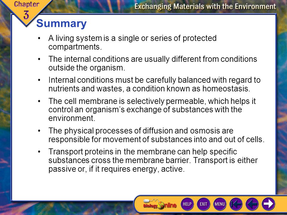 Chapter Highlights 1 Summary The internal conditions are usually different from conditions outside the organism.