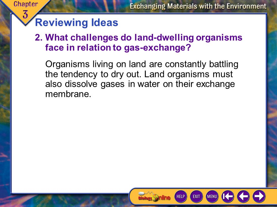 Chapter Highlights 6 Reviewing Ideas 2.What challenges do land-dwelling organisms face in relation to gas-exchange.