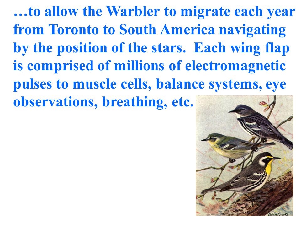 …allowing the Monarch butterfly to fly 1200 miles from Canada to Mexico each autumn navigating by the earth's magnetic field, and...