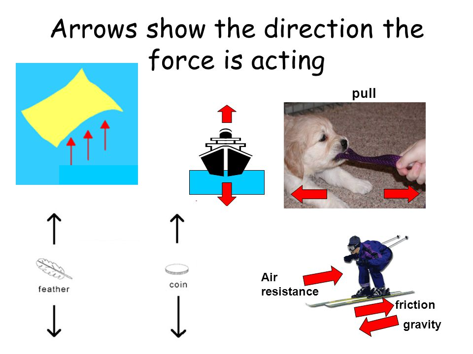 Arrows show the direction the force is acting upthrust weight pull friction gravity Air resistance