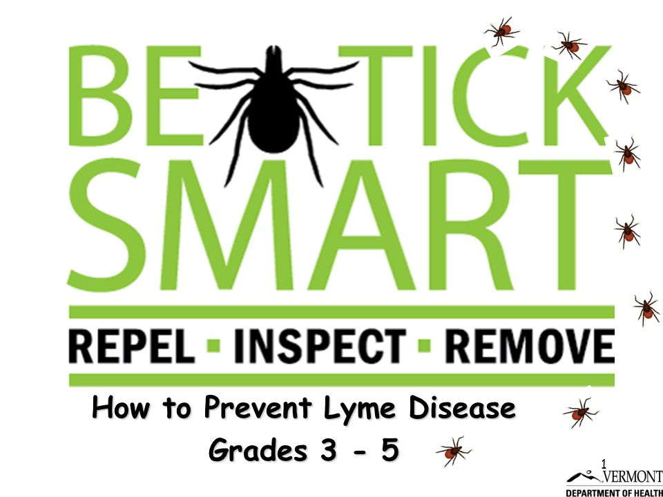 1 How to Prevent Lyme Disease Grades 3 - 5