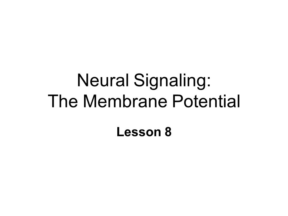 Neural Signaling: The Membrane Potential Lesson 8
