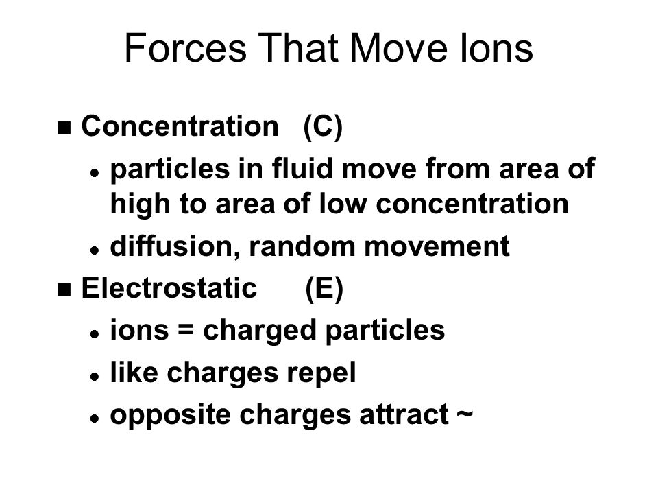 Forces That Move Ions n Concentration (C) l particles in fluid move from area of high to area of low concentration l diffusion, random movement n Electrostatic (E) l ions = charged particles l like charges repel l opposite charges attract ~