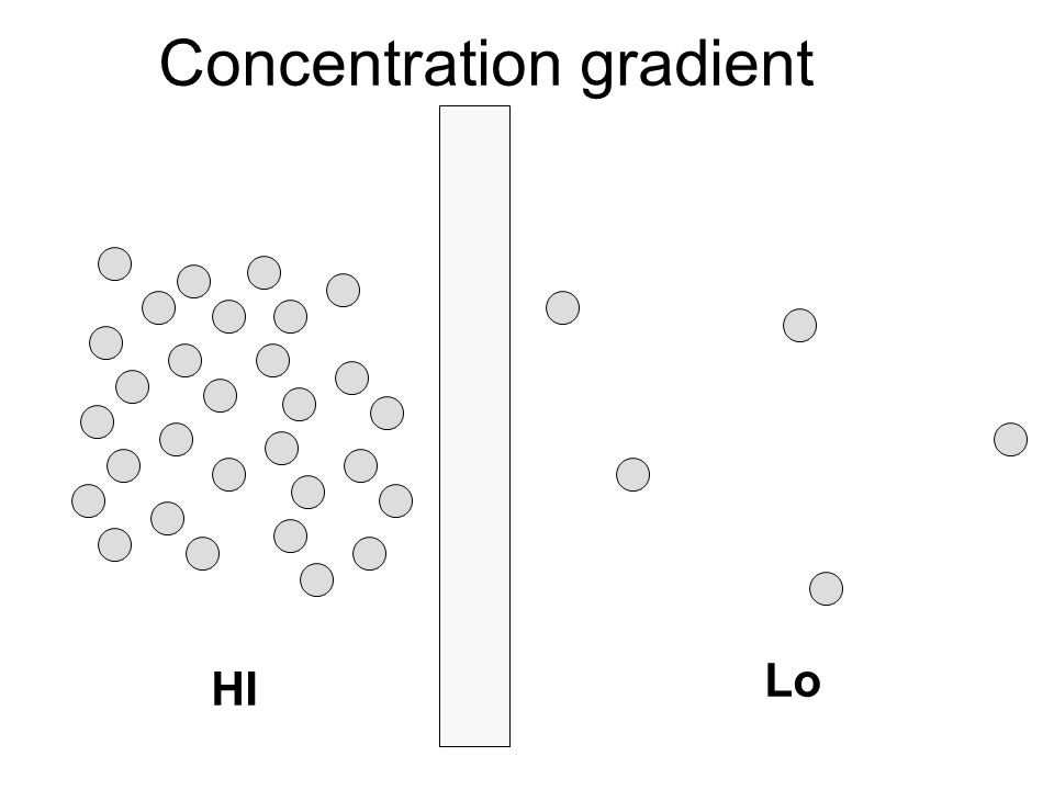Concentration gradient HI Lo