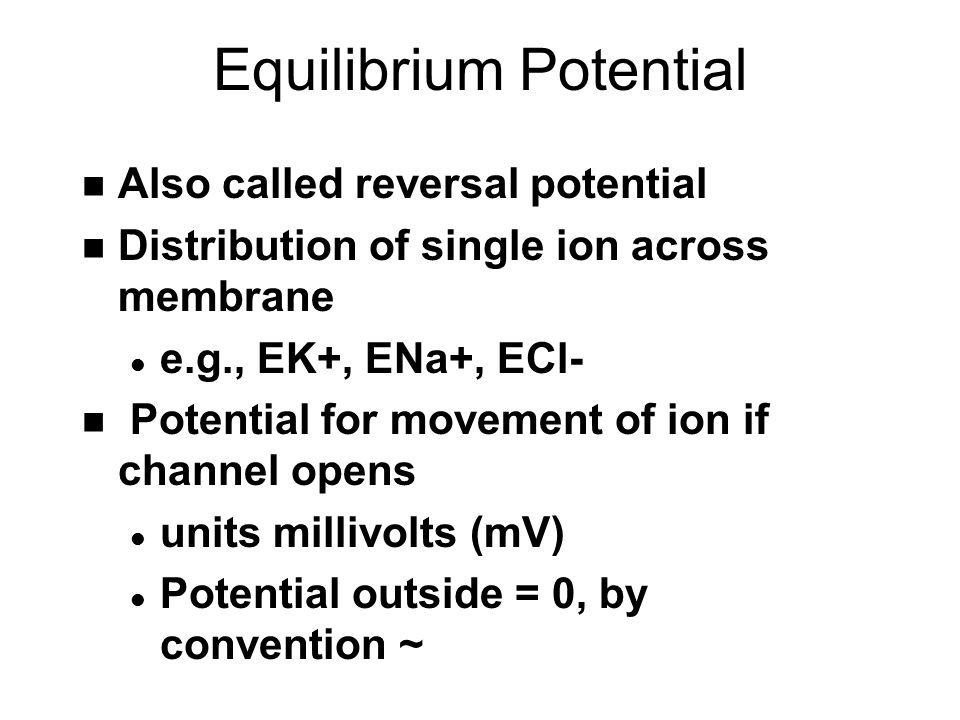 Equilibrium Potential n Also called reversal potential n Distribution of single ion across membrane l e.g., EK+, ENa+, ECl- n Potential for movement of ion if channel opens l units millivolts (mV) l Potential outside = 0, by convention ~