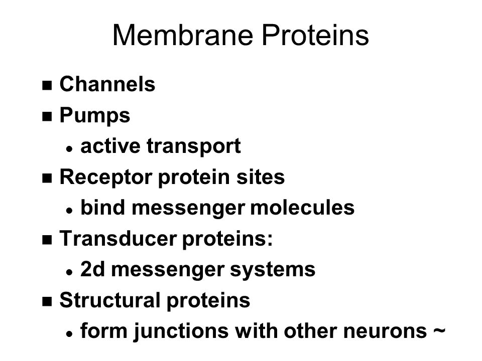 Membrane Proteins OUTSIDE INSIDE