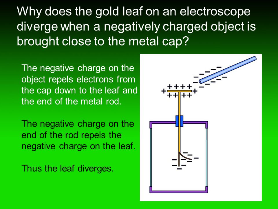 Why does the gold leaf on an electroscope diverge when a negatively charged object is brought close to the metal cap? The negative charge on the objec