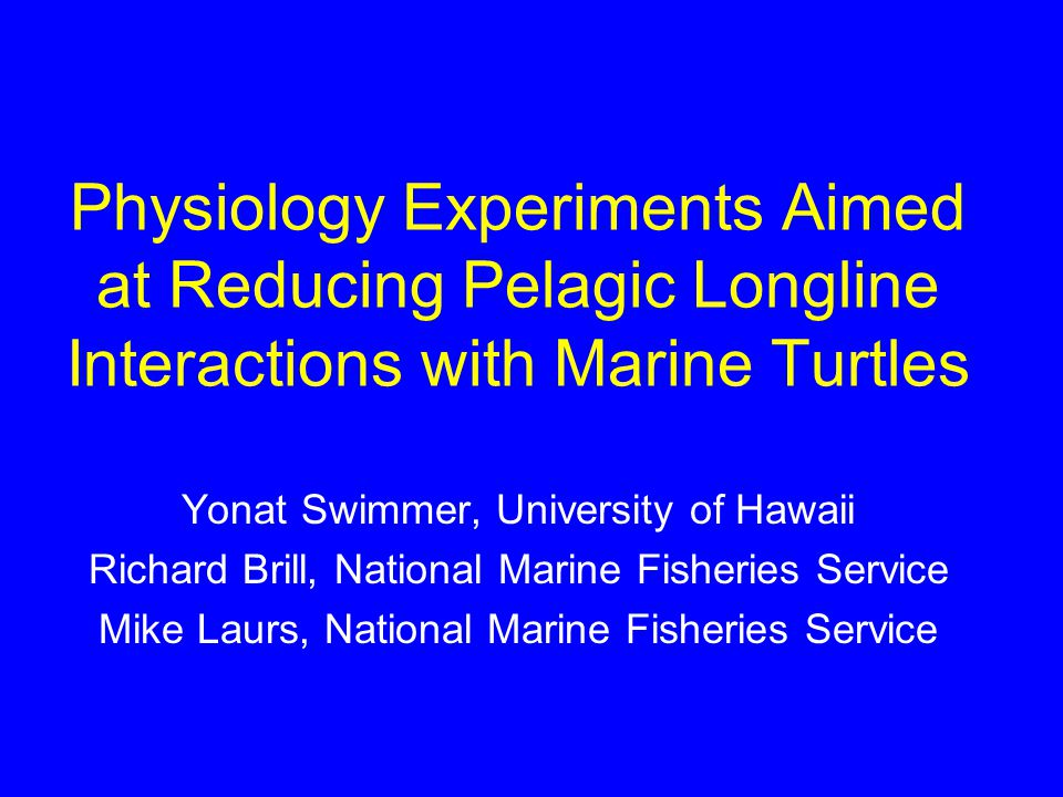 Physiology Experiments Aimed at Reducing Pelagic Longline Interactions with Marine Turtles Yonat Swimmer, University of Hawaii Richard Brill, National