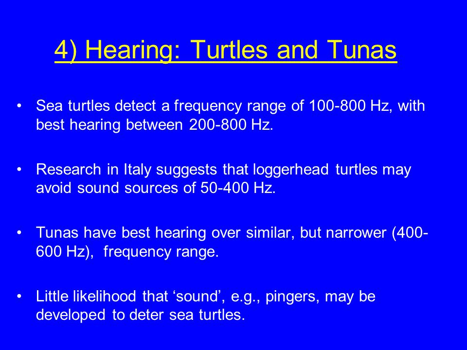 4) Hearing: Turtles and Tunas Sea turtles detect a frequency range of 100-800 Hz, with best hearing between 200-800 Hz. Research in Italy suggests tha