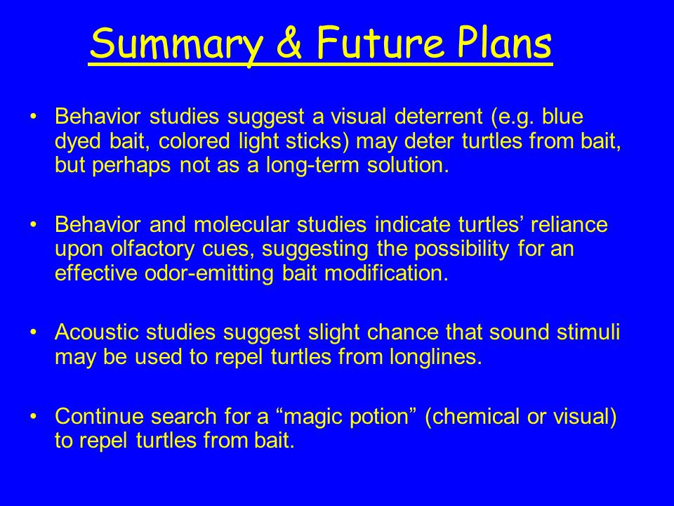 Summary & Future Plans Behavior studies suggest a visual deterrent (e.g. blue dyed bait, colored light sticks) may deter turtles from bait, but perhap