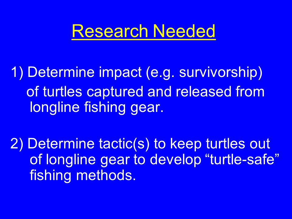 Research Needed 1) Determine impact (e.g. survivorship) of turtles captured and released from longline fishing gear. 2) Determine tactic(s) to keep tu