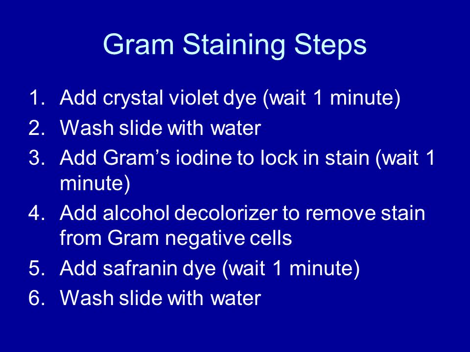 Gram Staining Steps 1.Add crystal violet dye (wait 1 minute) 2.Wash slide with water 3.Add Gram's iodine to lock in stain (wait 1 minute) 4.Add alcohol decolorizer to remove stain from Gram negative cells 5.Add safranin dye (wait 1 minute) 6.Wash slide with water
