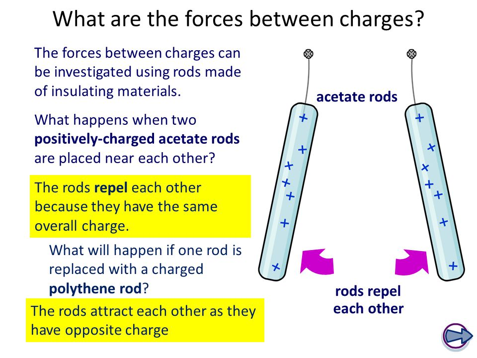 What are the forces between charges.