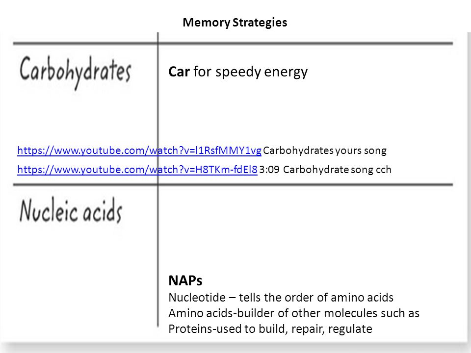 Memory Strategies NAPs Nucleotide – tells the order of amino acids Amino acids-builder of other molecules such as Proteins-used to build, repair, regulate Car for speedy energy https://www.youtube.com/watch?v=l1RsfMMY1vghttps://www.youtube.com/watch?v=l1RsfMMY1vg Carbohydrates yours song https://www.youtube.com/watch?v=H8TKm-fdEl8https://www.youtube.com/watch?v=H8TKm-fdEl8 3:09 Carbohydrate song cch