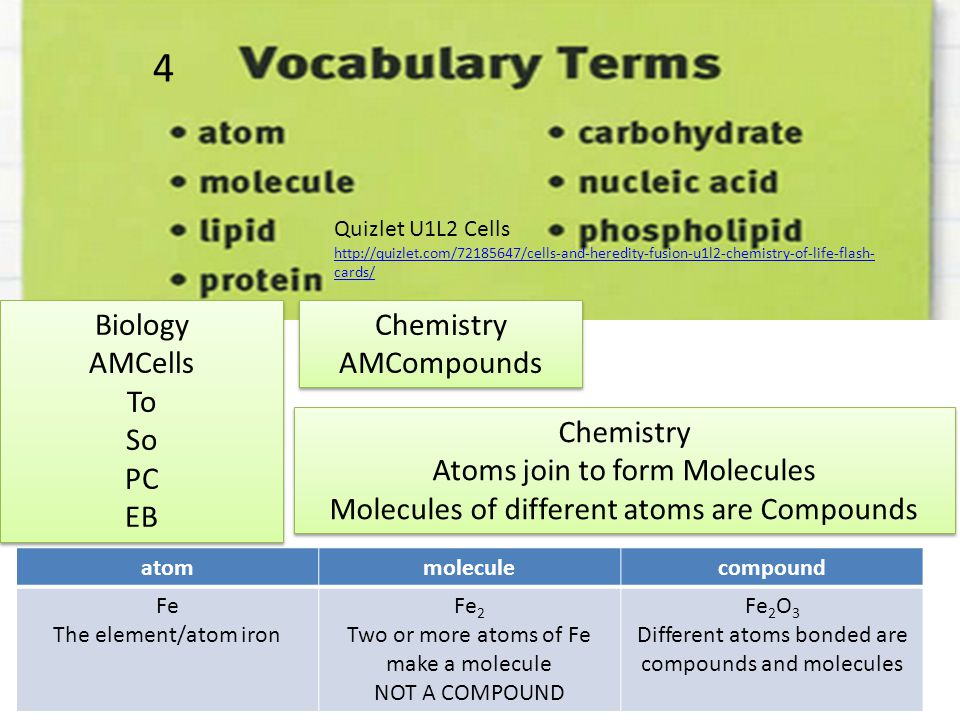 Is the element that makes up most of the human body Gold if it is 100% Au atoms is a pure element, but the human body is made of molecules and compounds in cells.