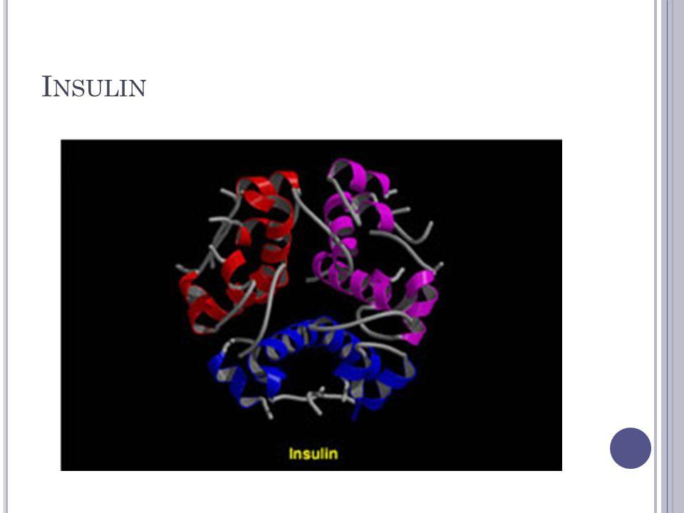 N ORMAL M RNA S TRAND CUGACGACGAUU Arginine Serine Isoleucin e Asparagine Arg Ser Iso Asp Protein