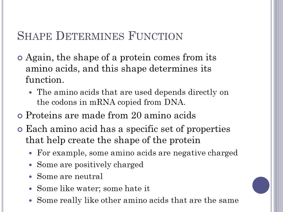 - cys -- + - + Hydrophobic Amino Acids on the Inside Hydrophilic Amino Acids on the Outside Disulfide Bond between Cys Neg & Pos attraction