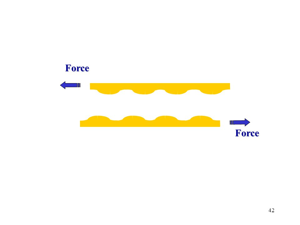 42 Force Force