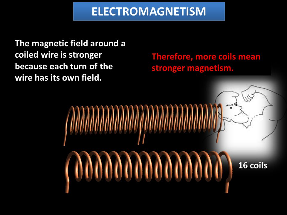 The magnetic field around a coiled wire is stronger because each turn of the wire has its own field.