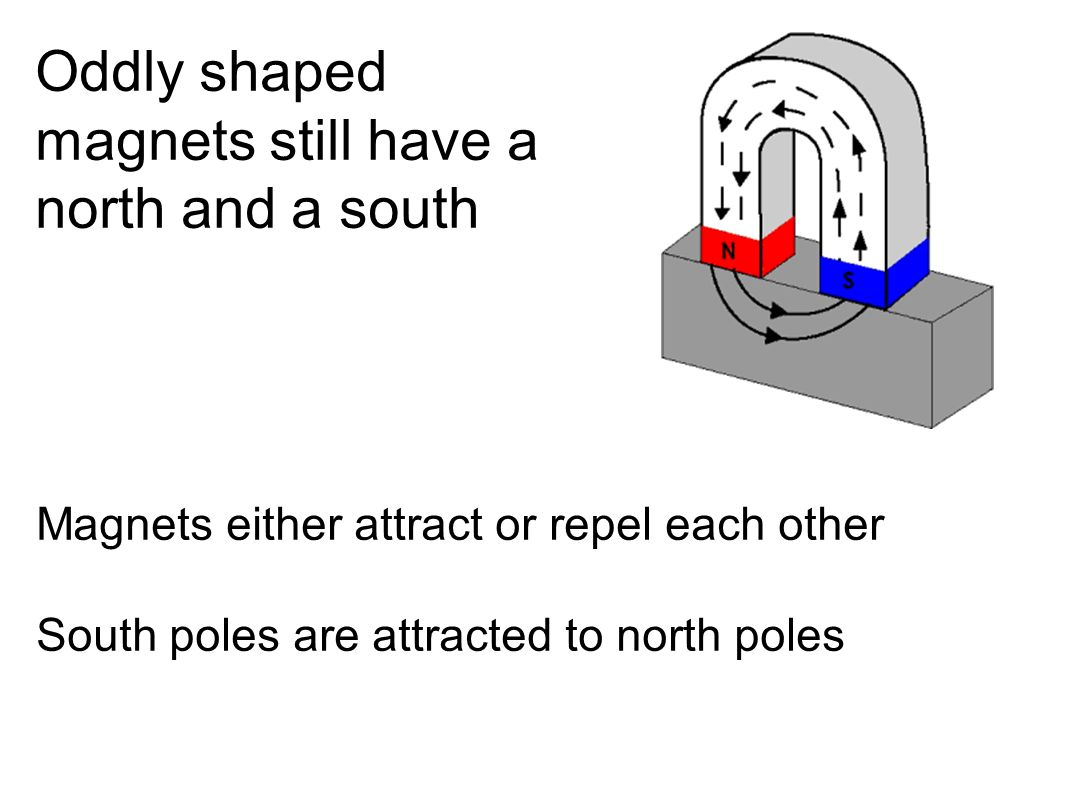 Oddly shaped magnets still have a north and a south Magnets either attract or repel each other South poles are attracted to north poles
