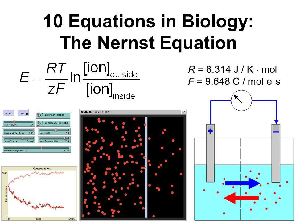 10 Equations in Biology: The Nernst Equation +– R = 8.314 J / K  mol F = 9.648 C / mol e – s