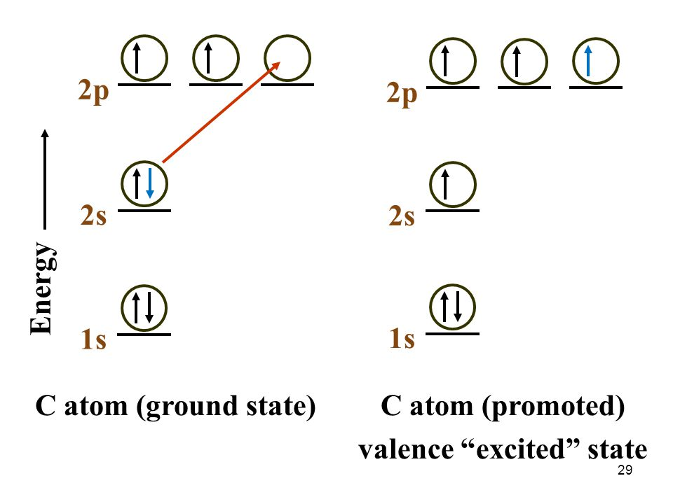 "1s C atom (ground state) 2s 2p Energy 2s 2p 1s C atom (promoted) valence ""excited"" state 29"
