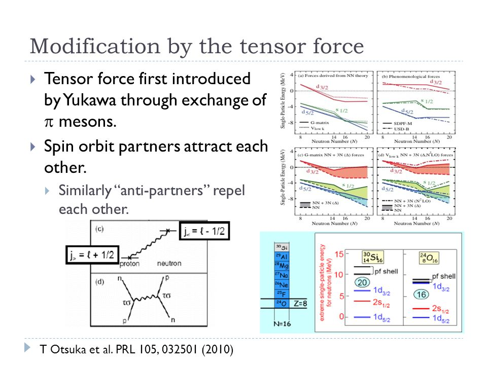 Modification by the tensor force  Tensor force first introduced by Yukawa through exchange of  mesons.