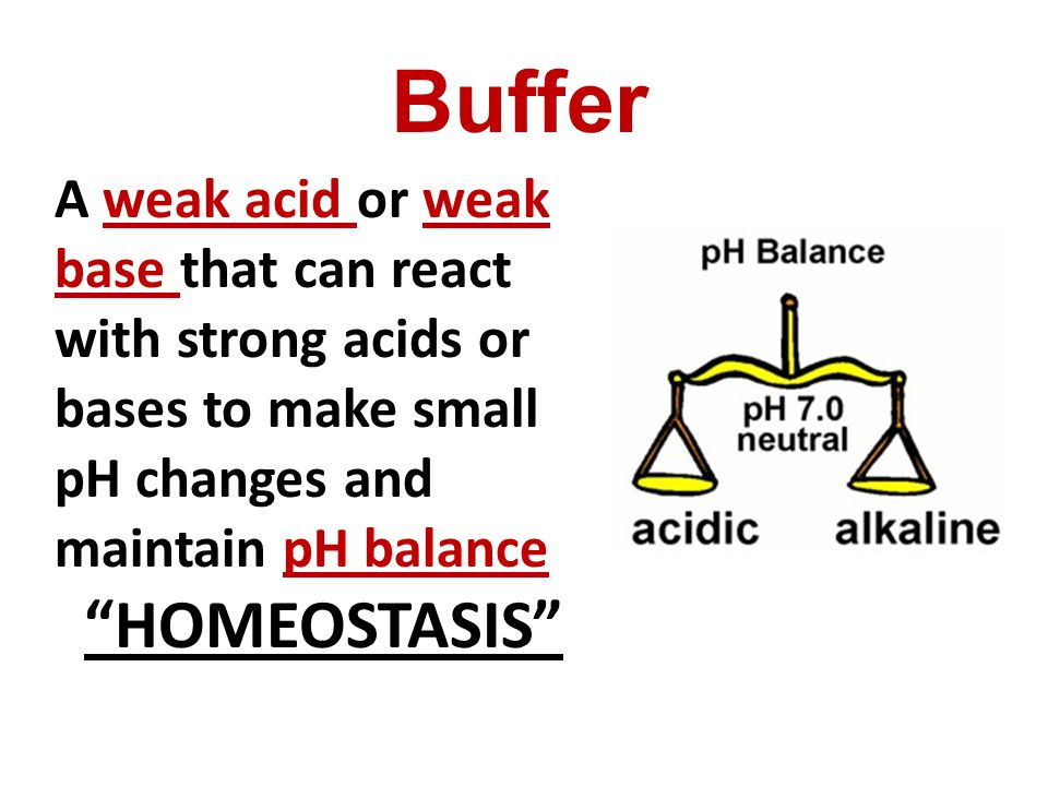 A weak acid or weak base that can react with strong acids or bases to make small pH changes and maintain pH balance HOMEOSTASIS Buffer