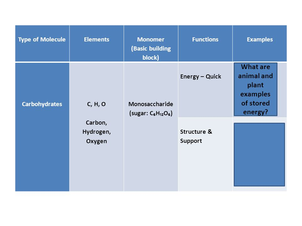 Type of Molecule Elements Monomer (Basic building block) Functions Examples Carbohydrates C, H, O Carbon, Hydrogen, Oxygen Monosaccharide (sugar: C₆H₁₂O₆) Energy – Quick Plants = Starch Animals = Glycogen Structure & Support Plants = Cellulose (fiber in cell walls) Animals = Chitin (exoskeletons) What are animal and plant examples of stored energy