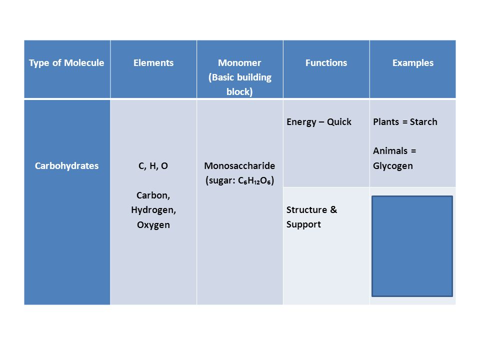 Type of Molecule Elements Monomer (Basic building block) Functions Examples Carbohydrates C, H, O Carbon, Hydrogen, Oxygen Monosaccharide (sugar: C₆H₁₂O₆) Energy – Quick Plants = Starch Animals = Glycogen Structure & Support Plants = Cellulose (fiber in cell walls) Animals = Chitin (exoskeletons)
