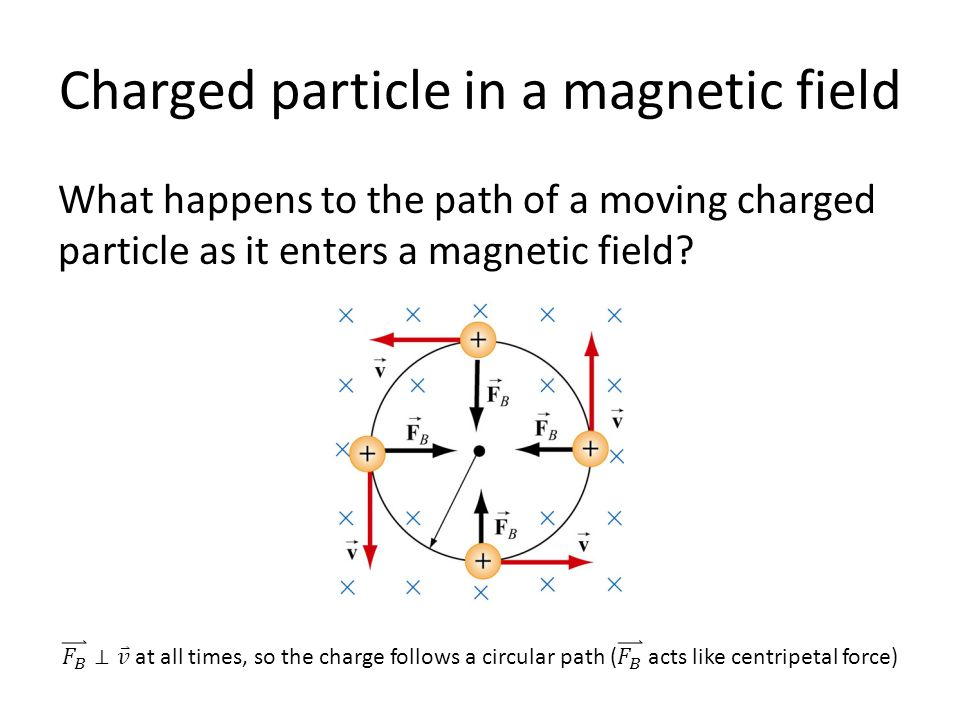Charged particle in a magnetic field What happens to the path of a moving charged particle as it enters a magnetic field