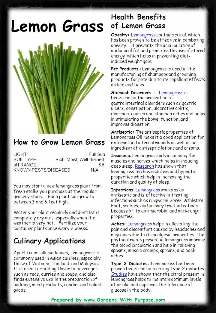 Lemon Grass Health Benefits of Lemon Grass Obesity: Lemongrass contains citral, which has been proven to be effective in combating obesity.