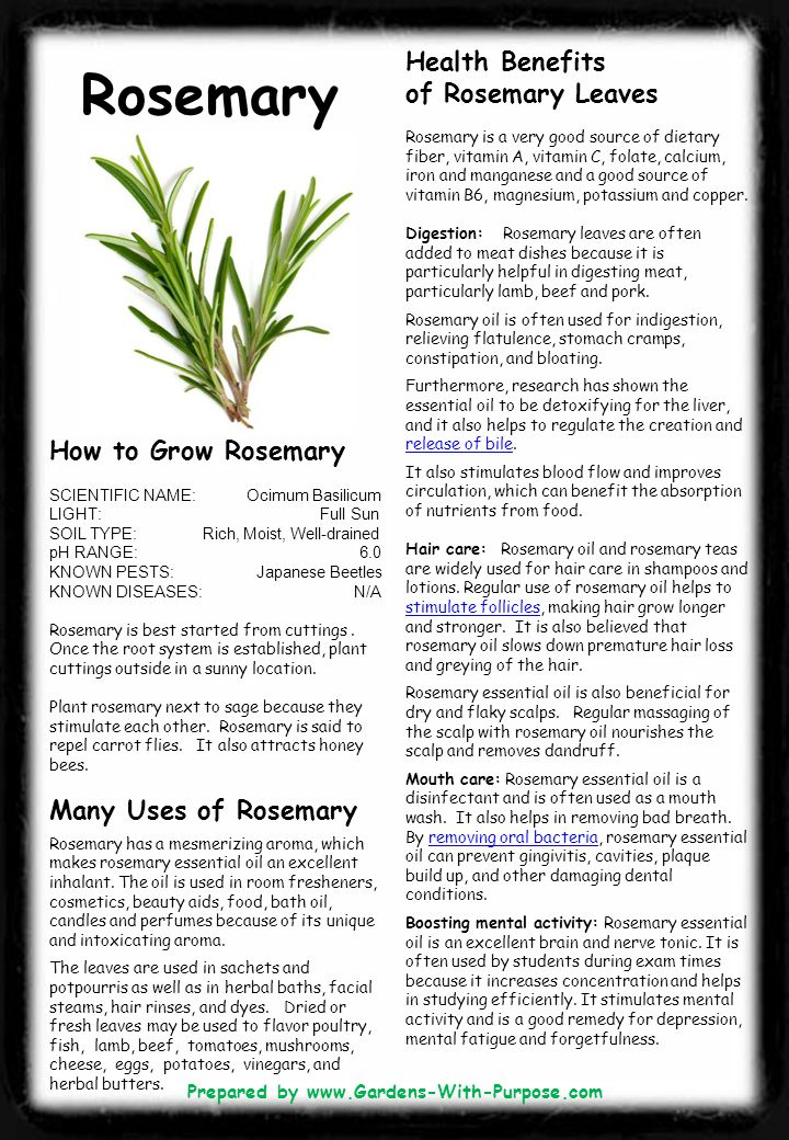 Rosemary Health Benefits of Rosemary Leaves Rosemary is a very good source of dietary fiber, vitamin A, vitamin C, folate, calcium, iron and manganese