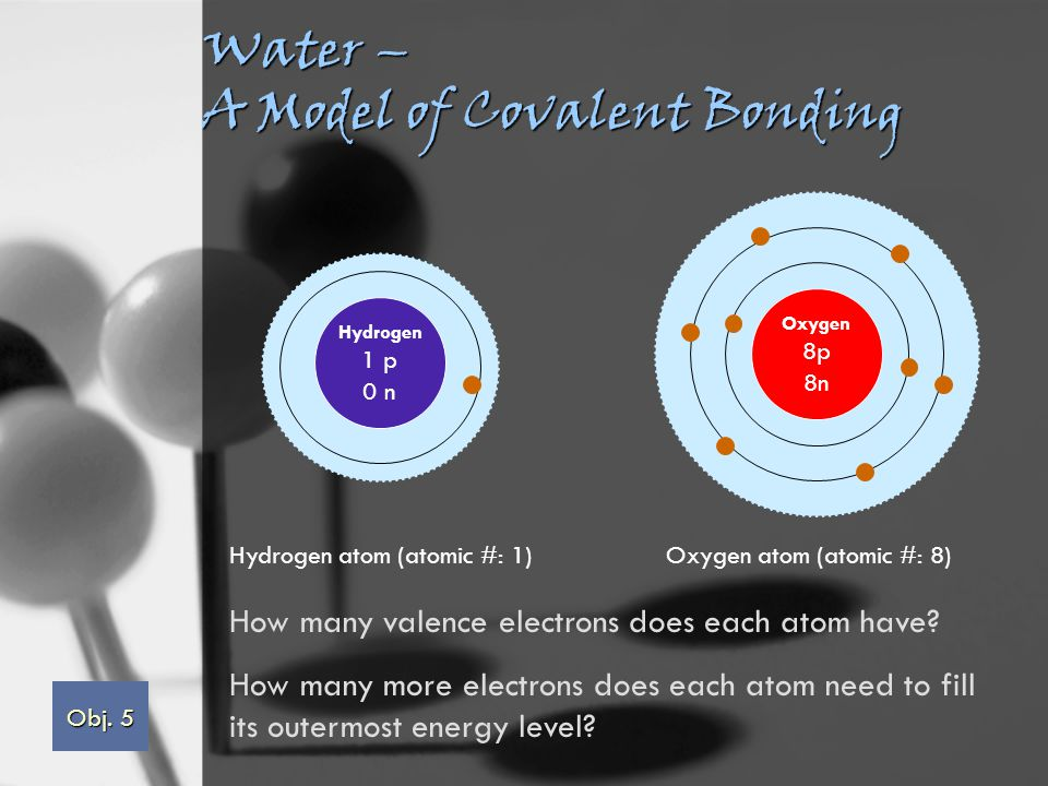 Water – A Model of Covalent Bonding Hydrogen 1 p 0 n Oxygen 8p 8n Hydrogen atom (atomic #: 1)Oxygen atom (atomic #: 8) How many valence electrons does each atom have.