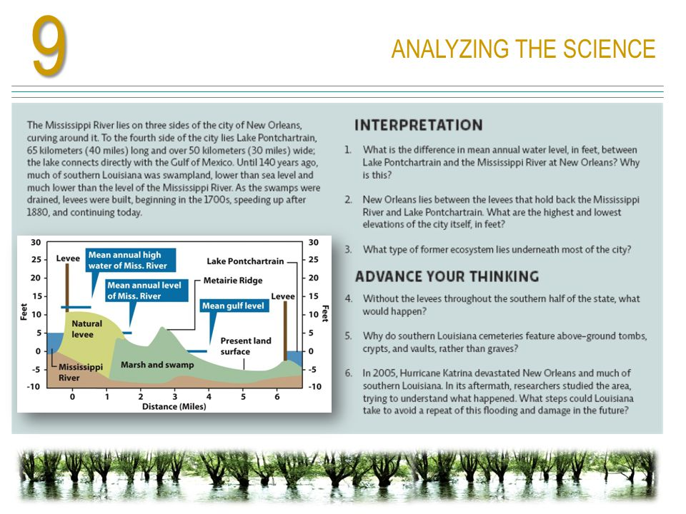 ANALYZING THE SCIENCE9
