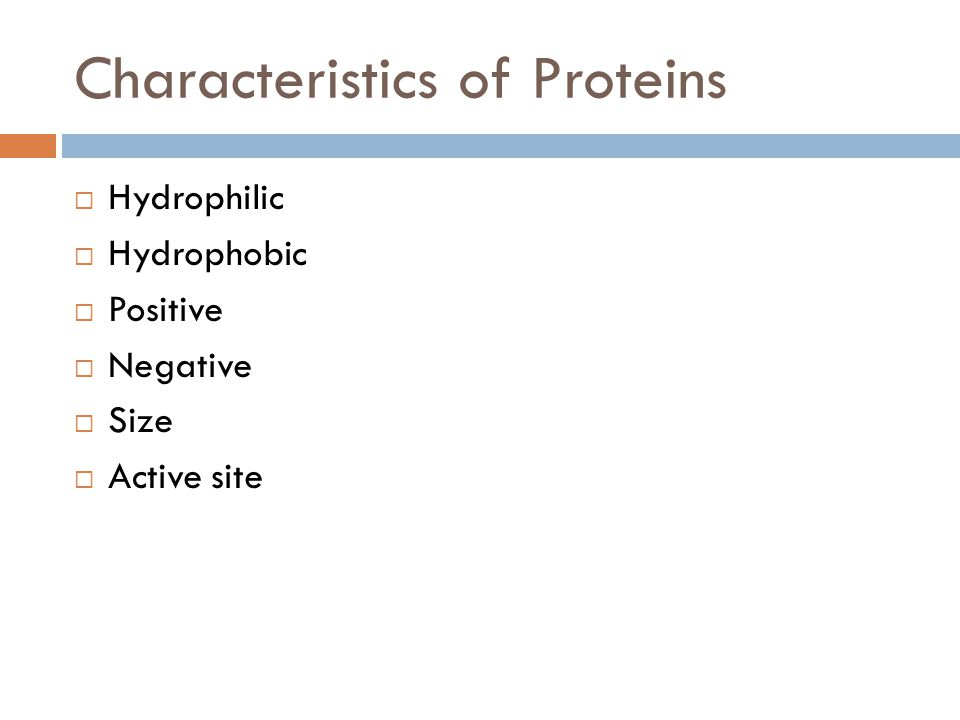 Characteristics of Proteins  Hydrophilic  Hydrophobic  Positive  Negative  Size  Active site